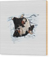 Best Snow Angel Phone Wood Print