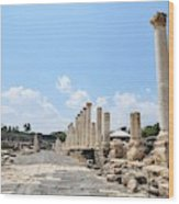 Bet Shean (scythopolis) Wood Print