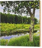 Bethel Landscape 3 Wood Print