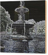 Bethesda Fountain Abstract Wood Print