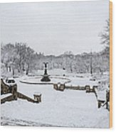 Bethesda Fountain In Central Park Wood Print by Susan Candelario