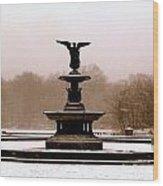 Bethesda Fountain Snow Wood Print
