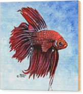 Betta-big Red Wood Print