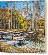 Better Re-think That Picnic Wood Print