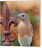 Fleur De Lis And Bluebird Wood Print