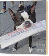 Betty The News Dog Wood Print