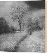 Between Black And White-23 Wood Print