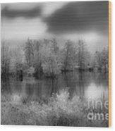Between Black And White-24 Wood Print