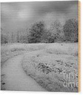 Between Black And White-25 Wood Print