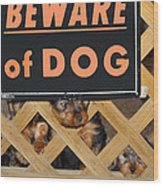 Beware Of Dog Wood Print by John Dauer