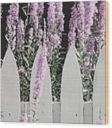 Beyond A Garden's Picket Fence Wood Print