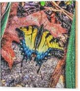 Beyond Chrysalis-tiger Swallowtail Wood Print