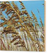 Beyond The Sea Oats Lies Eternity Wood Print by Lorraine Heath