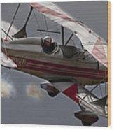 Bi Plane Wood Print