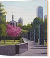 Bicentennial Capital Mall Park Wood Print by Janet King