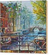 Bicycle In Amsterdam Wood Print