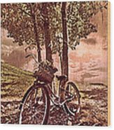 Bicycle In The Park Wood Print