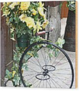 Bicycle Plant Holder Wood Print