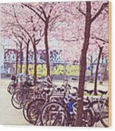 Bicycles Under The Blooming Trees. Pink Spring In Amsterdam  Wood Print