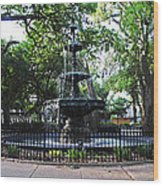 Bienville Fountain Mobile Alabama Wood Print