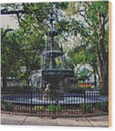 Bienville Square Fountain Closeup Wood Print