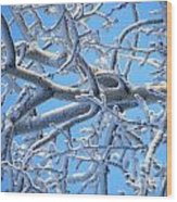 Bifurcations In White And Blue Wood Print