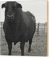 Big Bad Black Bull Wood Print