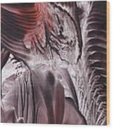 Big-bang Glimmer Wood Print