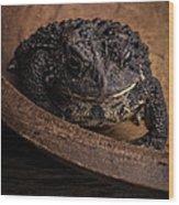 Big Black Toad Wood Print
