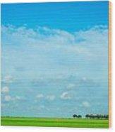 Big Blue Texas Sky Wood Print