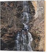 Big Bradley Falls 1 Wood Print