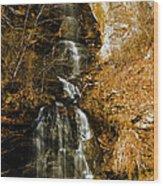 Big Bradley Falls 4 Wood Print