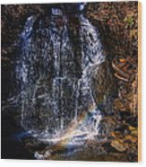 Big Bradley Falls 5 Wood Print
