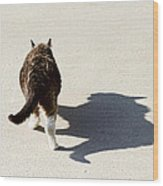 Big Cat Ferocious Shadow Wood Print by James BO  Insogna