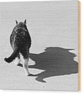 Big Cat Ferocious Shadow Monochrome Wood Print by James BO  Insogna