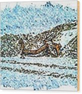 Big Cat - Sometimes They Fall - Winter - Snow - Slippery Slope  Wood Print