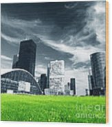 Big City And Green Fresh Meadow Wood Print