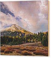 Big Cottonwood Canyon Wood Print