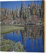 Big Cottonwood Canyon  Wood Print by Richard Cheski