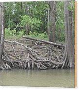 Big Cypress River Trees Wood Print