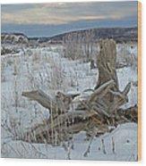 Big Delta Riverbed Wood Print
