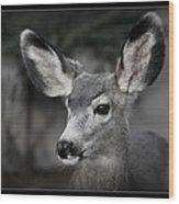 Big Ears Wood Print