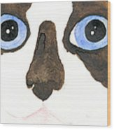 Big Eyed Cat Wood Print