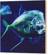 Big Fish Small Fish - Electric Wood Print