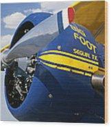 Big Foot Biplane Wood Print