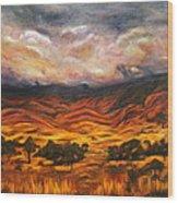 Big Gountry - Mac Donnell Ranges Australia Wood Print