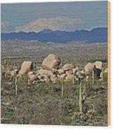 Big Granite Boulder In The Desert Wood Print
