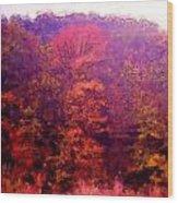 Big Hill Autumn Wood Print