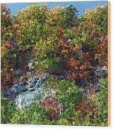 Big Hill Cliffs In Autumn Wood Print