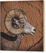 Big Horn Wood Print